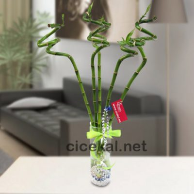 hasanpaşa çiçekçi