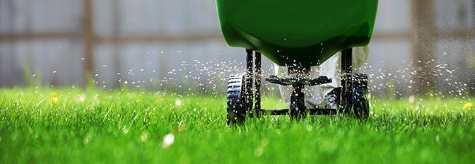 Çim Gübreleme Nasıl Yapılır