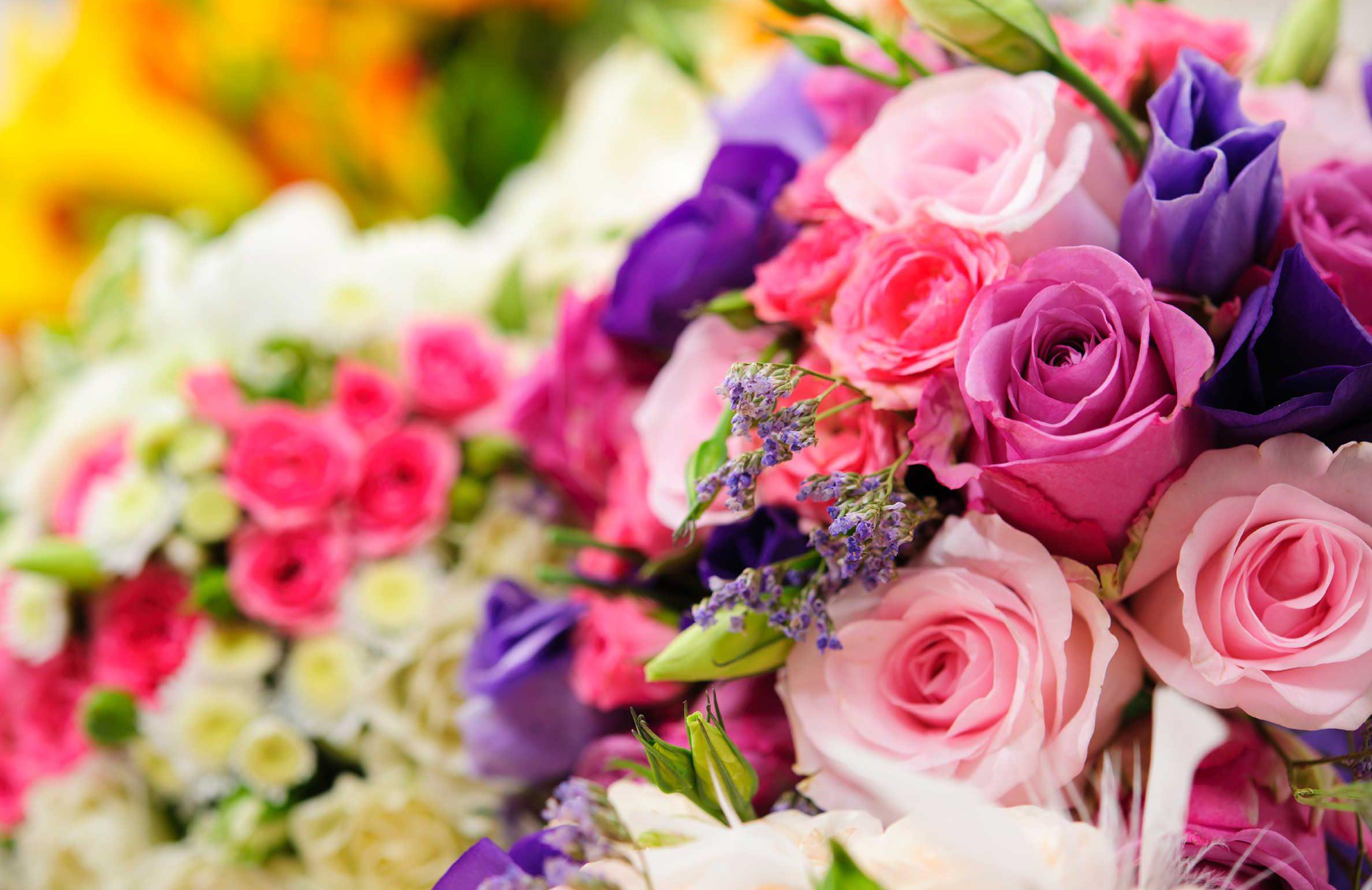 İstanbul Anadolu Yakası Çiçek Siparişi