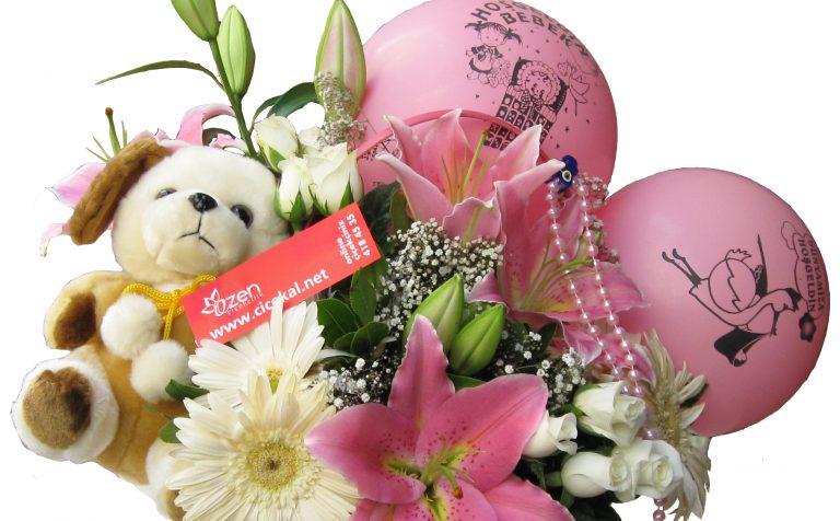 Canlı Bebek Çiçekleri