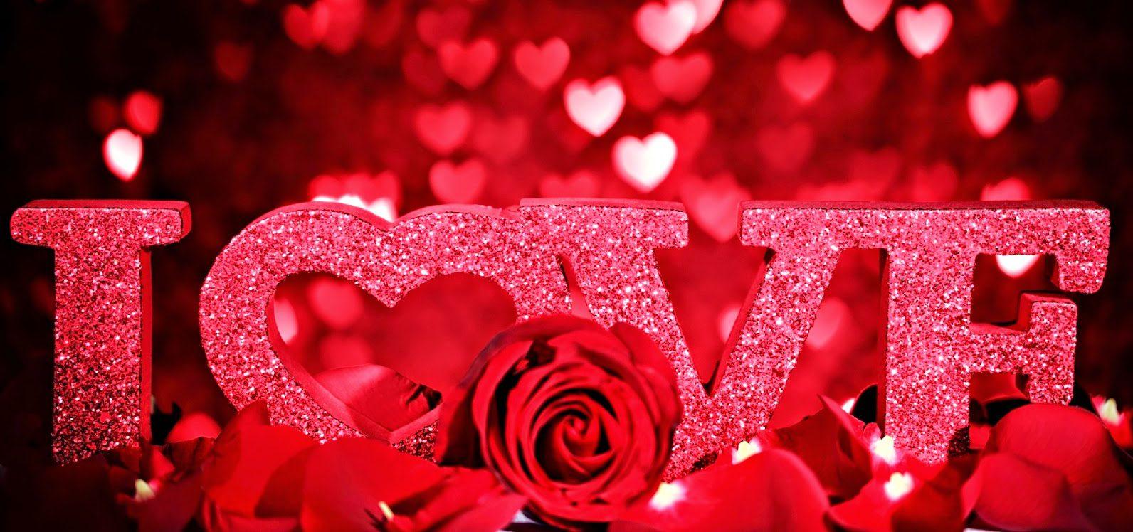 Sevgiliye Hangi Çiçek Gönderilir